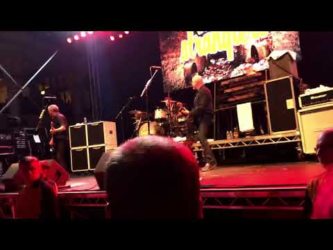 The Stranglers get a grip on yourself Live Rebellion 2019