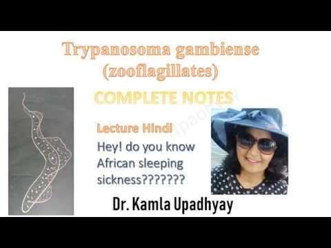 tripanosoma en hindi