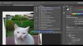 Как пользоваться экшеном в фотошопе? Ответ