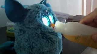 Злой Furby