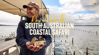 South Australian Coastal Safari with David Doudle | Live from Aus, Eyre Peninsula