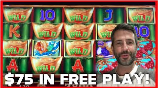 PLAYING WITH FREE PLAY IS THE BEST! ✦  MEGA VAULT ✦ WILD SHOWER SLOT!