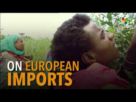 How Europe Is Starving Africa With Cheap Food