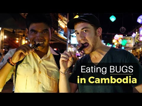 Eating BUGS in Siem Reap, Cambodia (WARNING: Graphic)