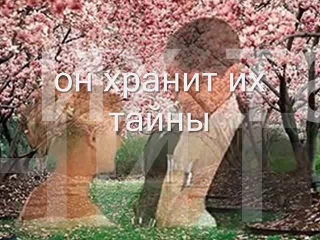 Изображение предпросмотра прочтения – АнастасияБогданова представляет буктрейлер кпроизведению «Вишневый сад» А.П.Чехова