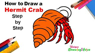Learn How to Draw with Color a Simple Hermit Crab Very Easy |  Hermit Crab Drawing Tutorial