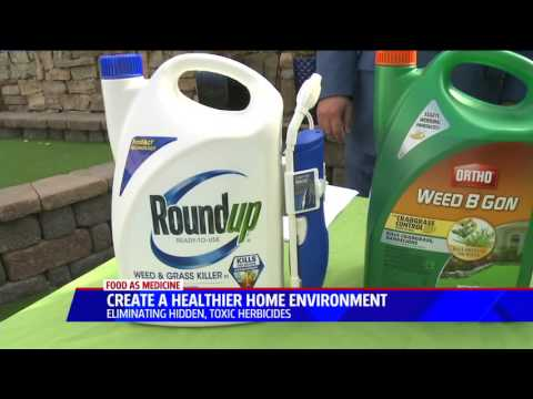 The Truth About GMOs and Glyphosate - 2 Year Study