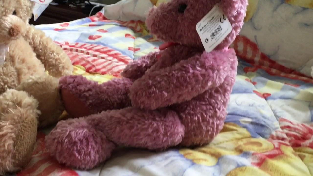 a teddy bear story