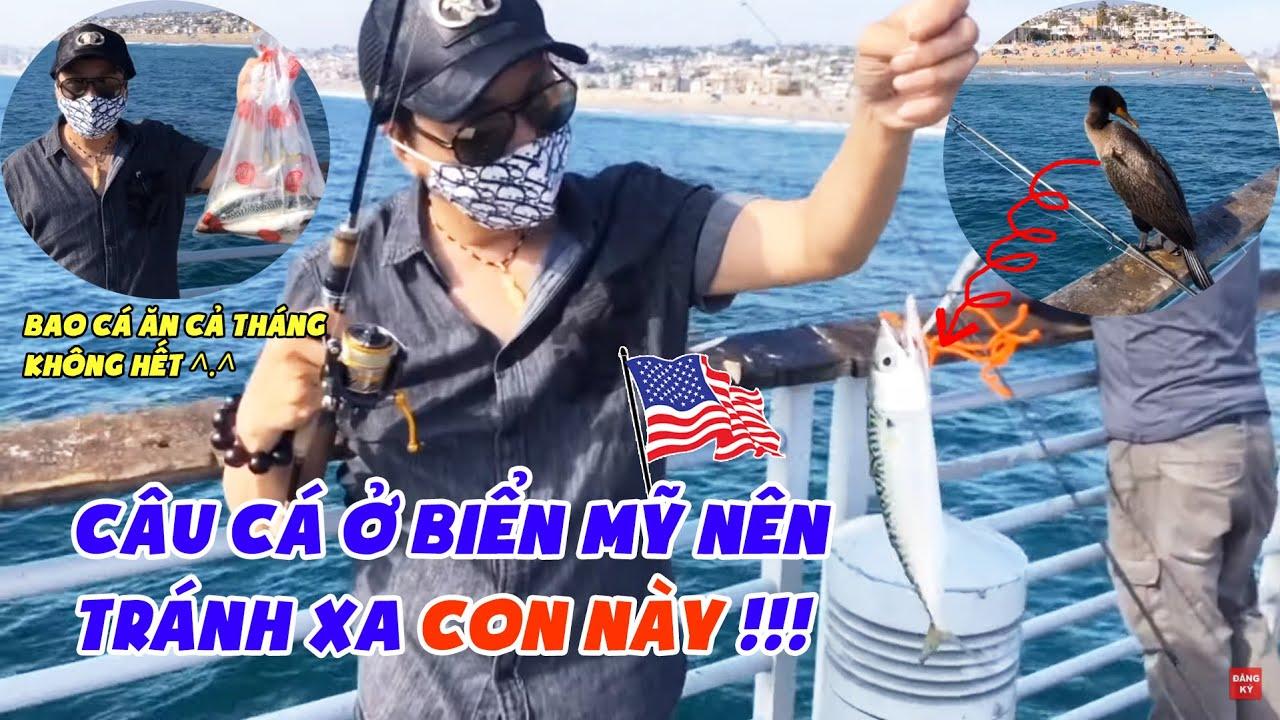 Trường Vũ Ra Biển Câu Cá 🐟 Cá Ăn CẢ THÁNG Không Hết 🐟 | Cuộc Sống Mỹ | Singer Trường Vũ