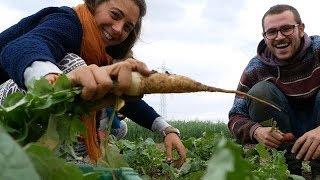 Tous Jardiniers pour des légumes locaux à l'année
