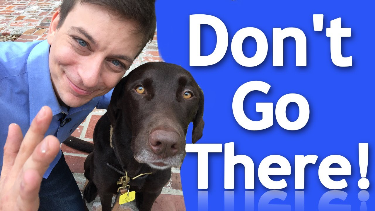 How To Effectively Teach Your Dog Boundaries Youtube