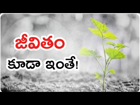 Game of Life, Be Fearless.. | Telugu Motivation | Voice Of Telugu