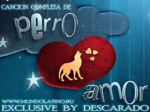 Carlos Ponce - Perro Amor (Cancion completa de Perro Amor)
