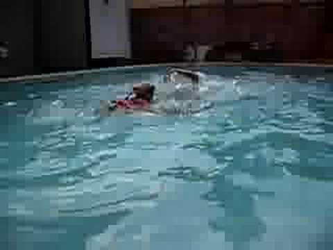 seamus: swimming savant