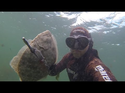 Spearfishing At The Jersey Shore