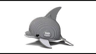 Dolphin イルカ