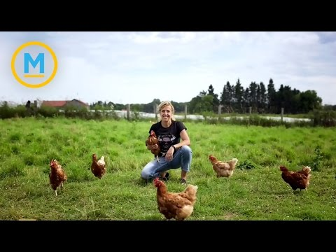 The couple that traded in city living for life on the farm | Your Morning