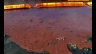 видео судно нефтесборщик
