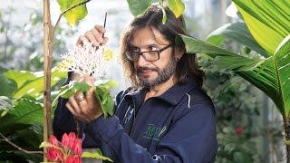 Carlos Magdalena at Kew Gardens