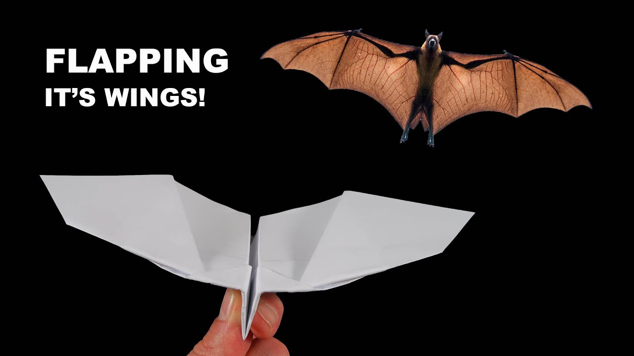 Download How to make a paper plane fly like a bat. Incredible Paper Airplanes