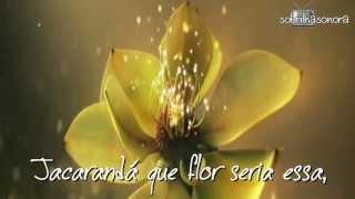 TEMA DE MALÚ - Jacarandá - Michele Leal - TRILHA SONORA SANGUE BOM