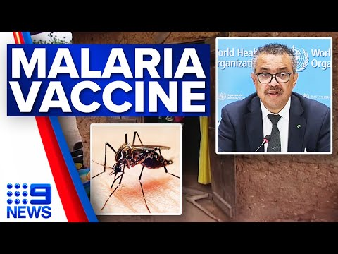 WHO approves world's first malaria vaccine | 9 News Australia
