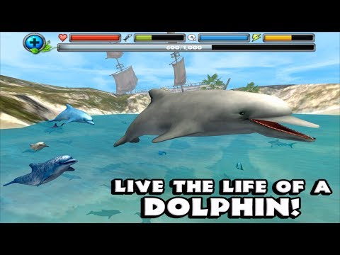 """🌊🐬Ultimate Ocean Simulator- """"Dolphin Simulator"""" -By Gluten Free Games-IOS/Android"""