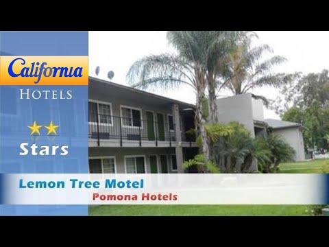 Lemon Tree Motel, Pomona Hotels - California