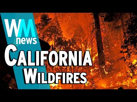10 California Wildfire Facts - WMNews Ep. 46