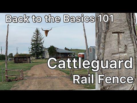 Rail Fence & Cattleguard.