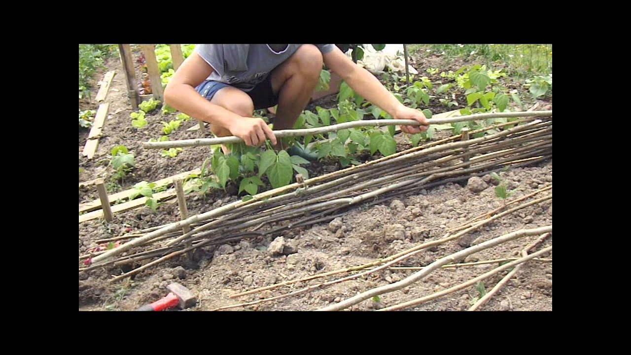 fabrication d\'une palissade en noisetier - YouTube