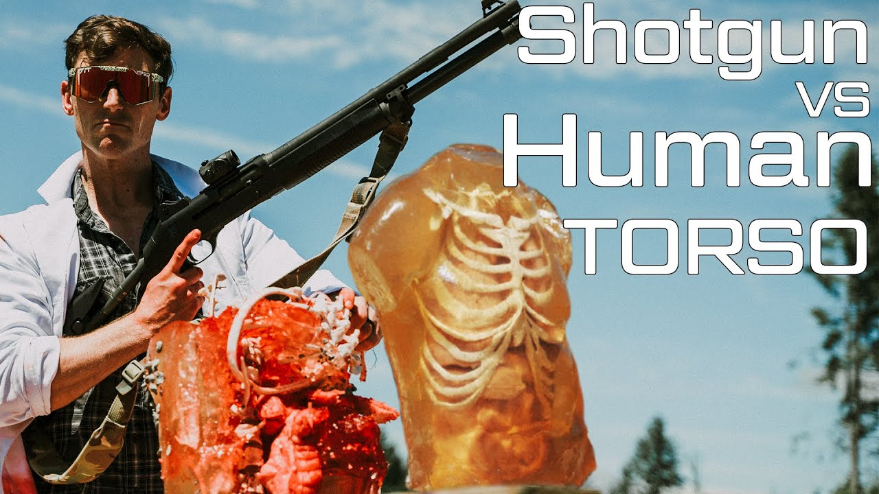 How Deadly are Shotguns?