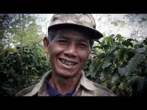 Laos Coffee Producers