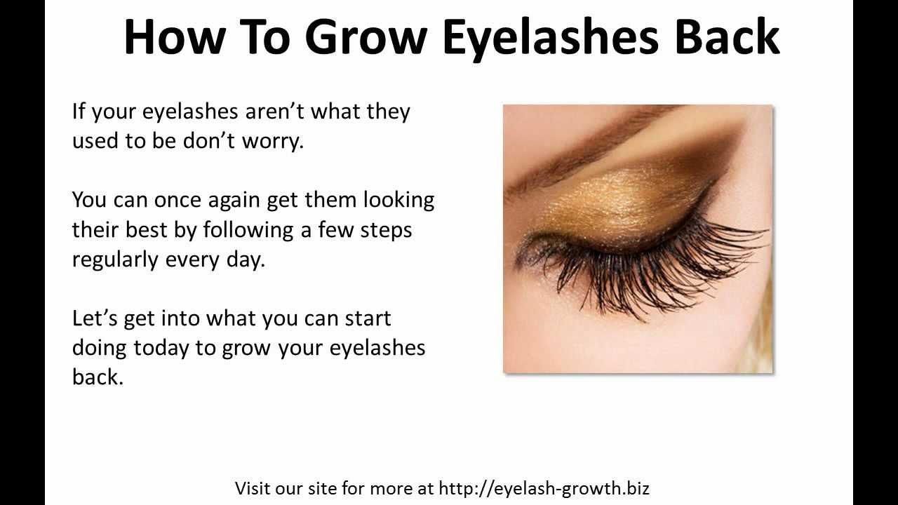 7a11cfb95b2 How To Grow Eyelashes Back - YouTube