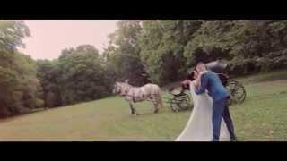 Анна и Александр! Свадьба в Богородицке