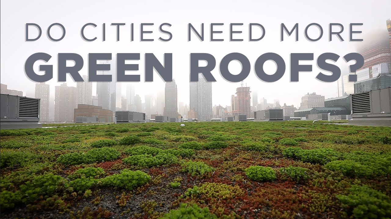 How Green Roofs Can Help Cities Npr Youtube