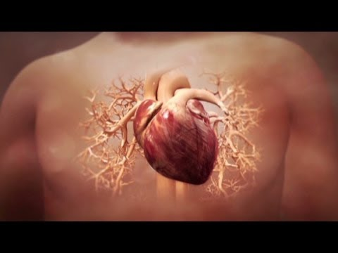 Can Heart Attack Damage Be Reversed