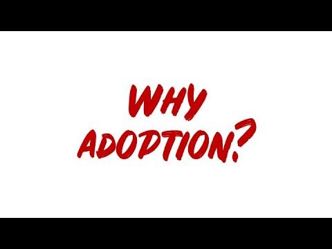 My first VLOG! Why adoption?