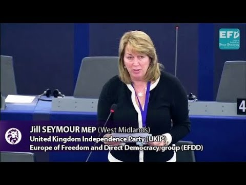 EU driving us out of our cars - Jill Seymour MEP
