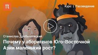 Негрито — Станислав Дробышевский