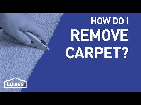 How Do I Remove Carpet? | DIY Basics