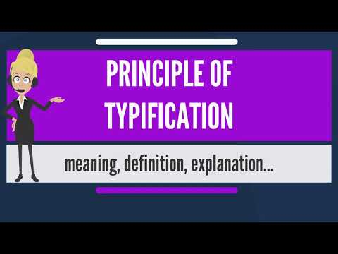 What is PRINCIPLE OF TYPIFICATION? What does PRINCIPLE OF TYPIFICATION mean?