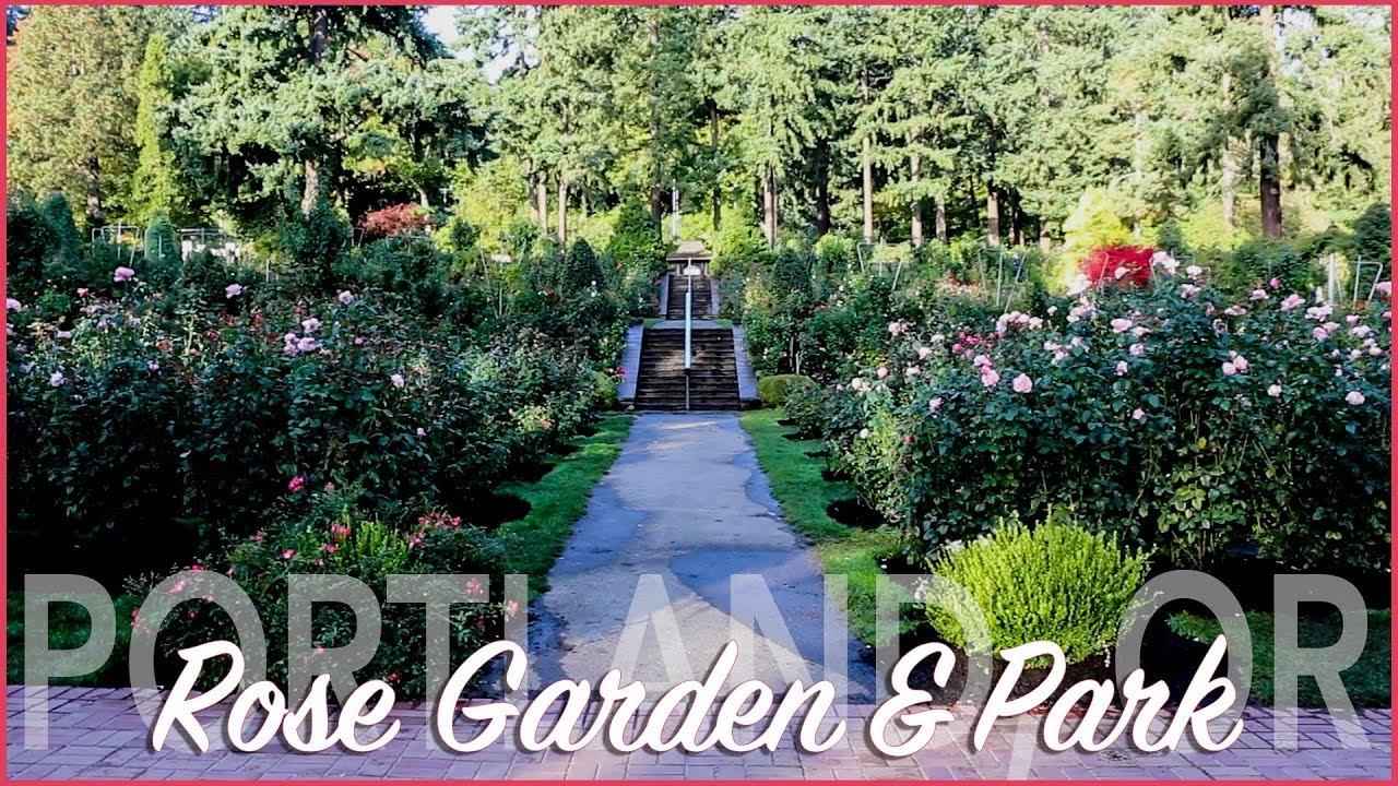 Portland Rose Garden And Washington Park Youtube