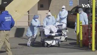 预计8月初美国新冠死亡人数将达82000人