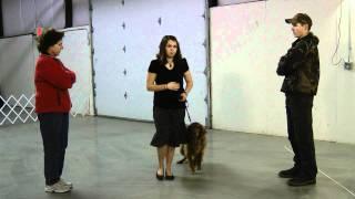 2c. Figure 8: Oregon 4-h Dog Obedience Project