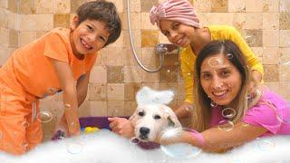 Bath Song Puppy Version / KLS Nursery Rhymes Songs