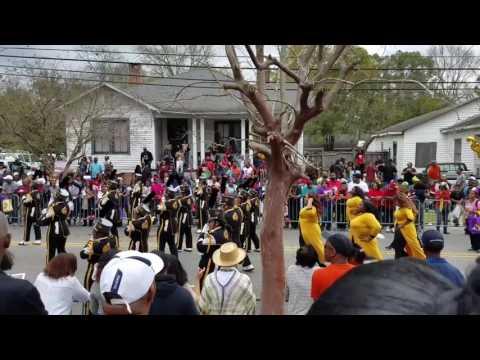 Mardi Gras 2017 ( Mobile AL)