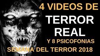 4 VIDEOS DE TERROR REAL Y 8 PISCOFONIAS Escalofriantes: Semana del Terror 2018 l Pasillo Infinito