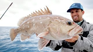 Fishing for DEEP Ocean Snowy Grouper