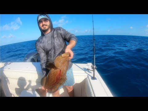 BOTTOM FISHING IN THE FLORIDA KEYS (Grouper And Snapper) - Andrew Offshore Ep. 2
